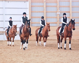 quadrille riders 2-th