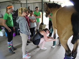 bandaging demo camp 2014-th